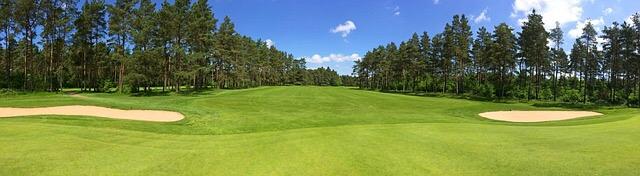 Chiropractic for golfers dunedin