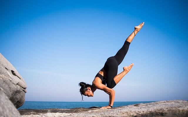 Chiropractic for fitness dunedin