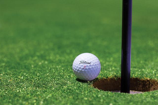 golf chiropractor dunedin